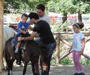 Sila pony (1280x1066)